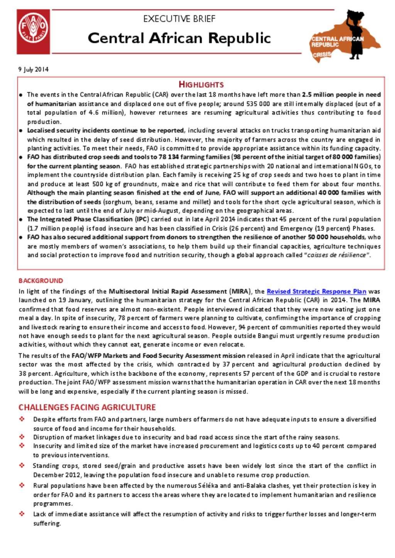 document fao car executive brief 9 july